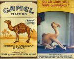 Camel - SE Edition Limitee Qui est votre plus Fidele compagnon? - Filters Turkish & American Blend (French warning)